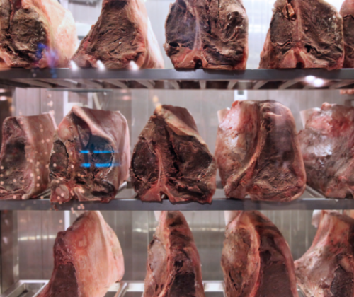 Meat Myth Busting - Part 1